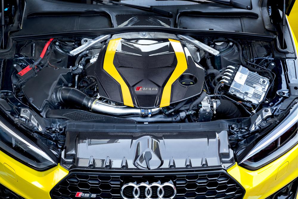 Motorabdeckung + Schlossabdeckung Carbon (glanz lackiert)